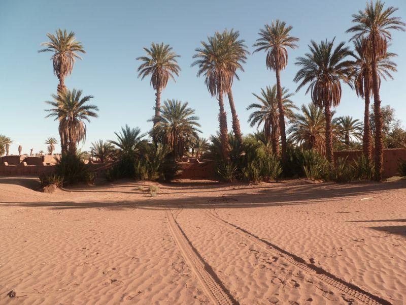 [Maroc Camp/Dernières nouvelles] Mon nouveau camping à Mhamid P1010566_1