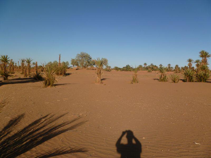 [Maroc Camp/Dernières nouvelles] Mon nouveau camping à Mhamid P1010568_1