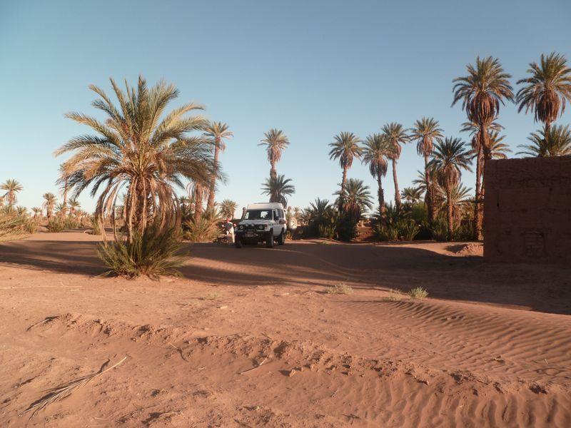 [Maroc Camp/Dernières nouvelles] Mon nouveau camping à Mhamid P1010578_1
