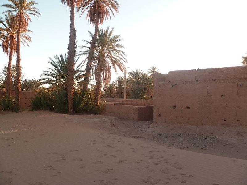 [Maroc Camp/Dernières nouvelles] Mon nouveau camping à Mhamid P1010584_1