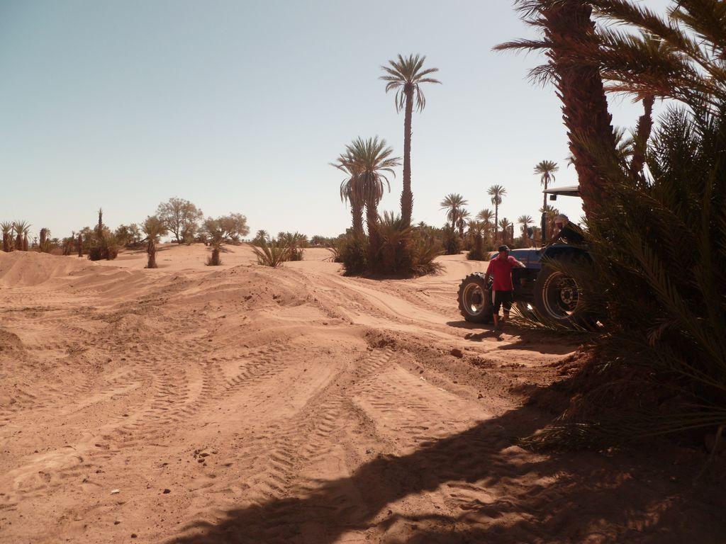 [Maroc Camp/Dernières nouvelles] Mon nouveau camping à Mhamid - Page 3 P1010717