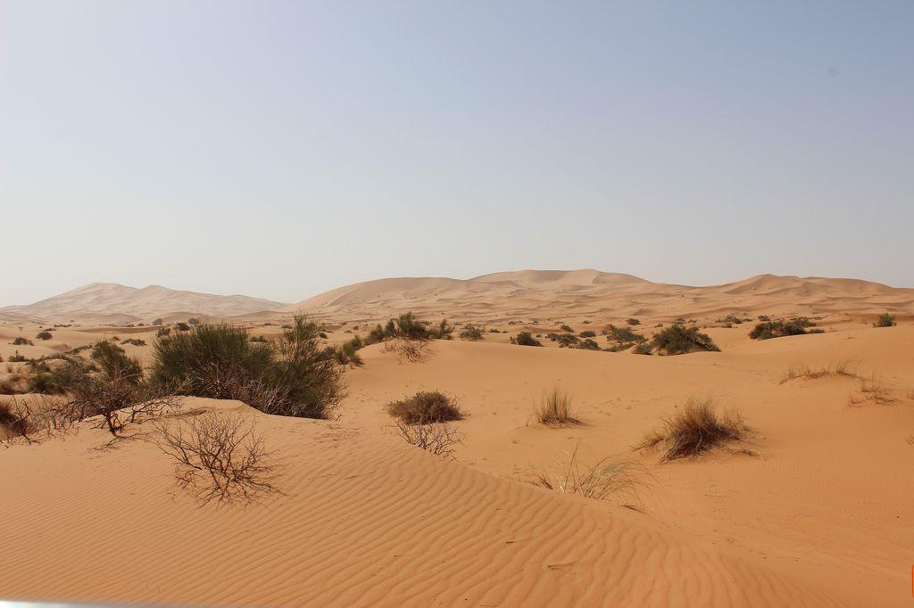 Maroc, c'est parti IMG_4097_1