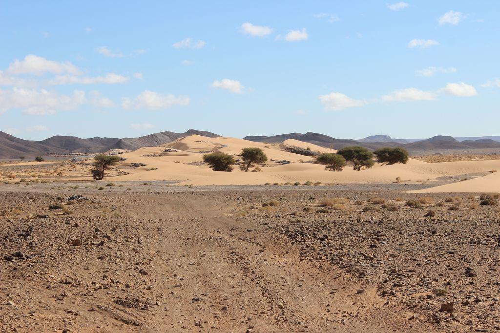 Maroc, c'est parti IMG_4041_1