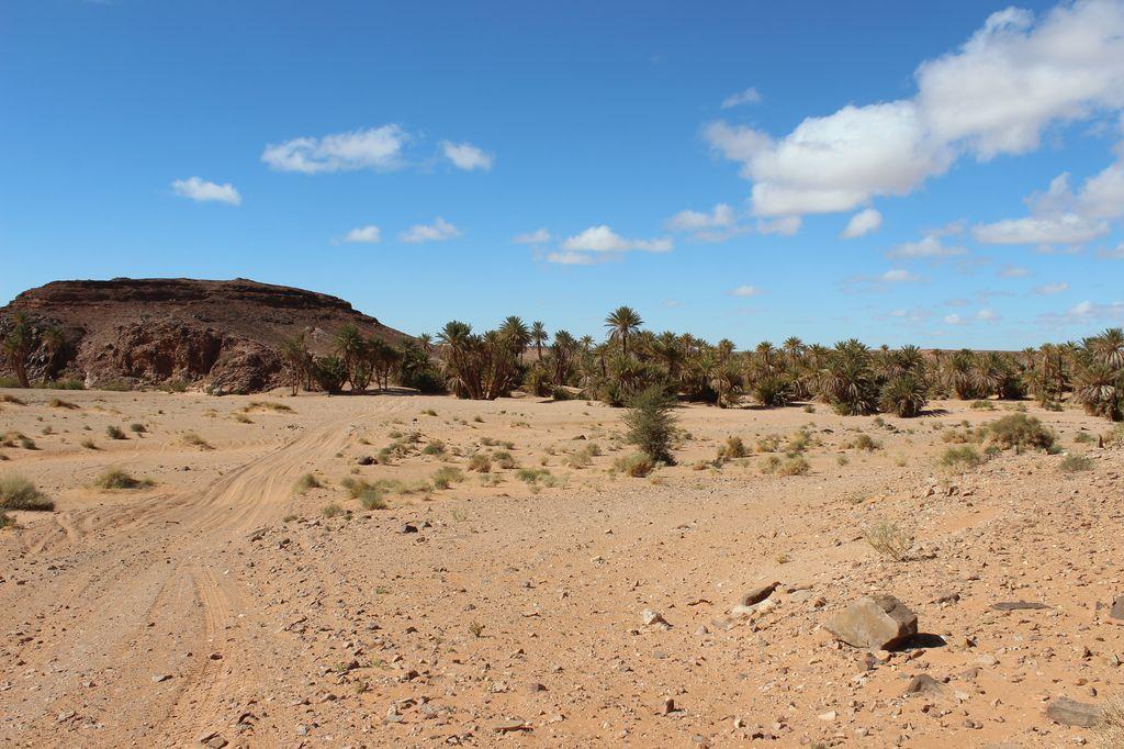 Maroc, c'est parti IMG_4047_1
